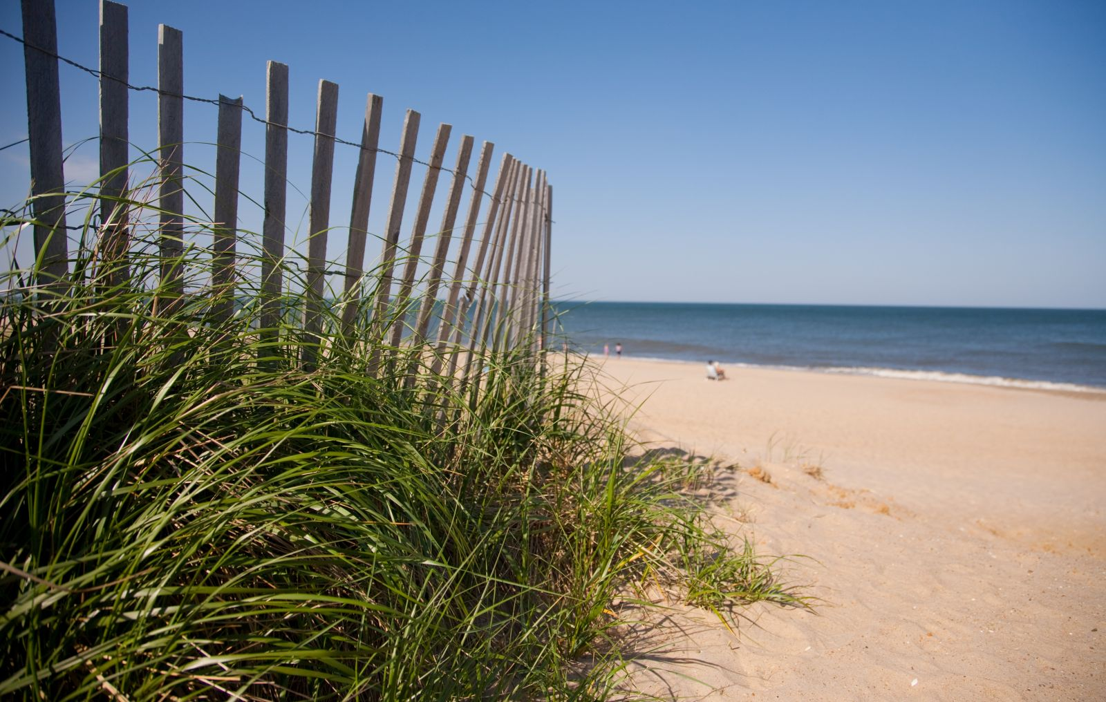 Delaware Beach Real Estate Sue Warrington-Doud